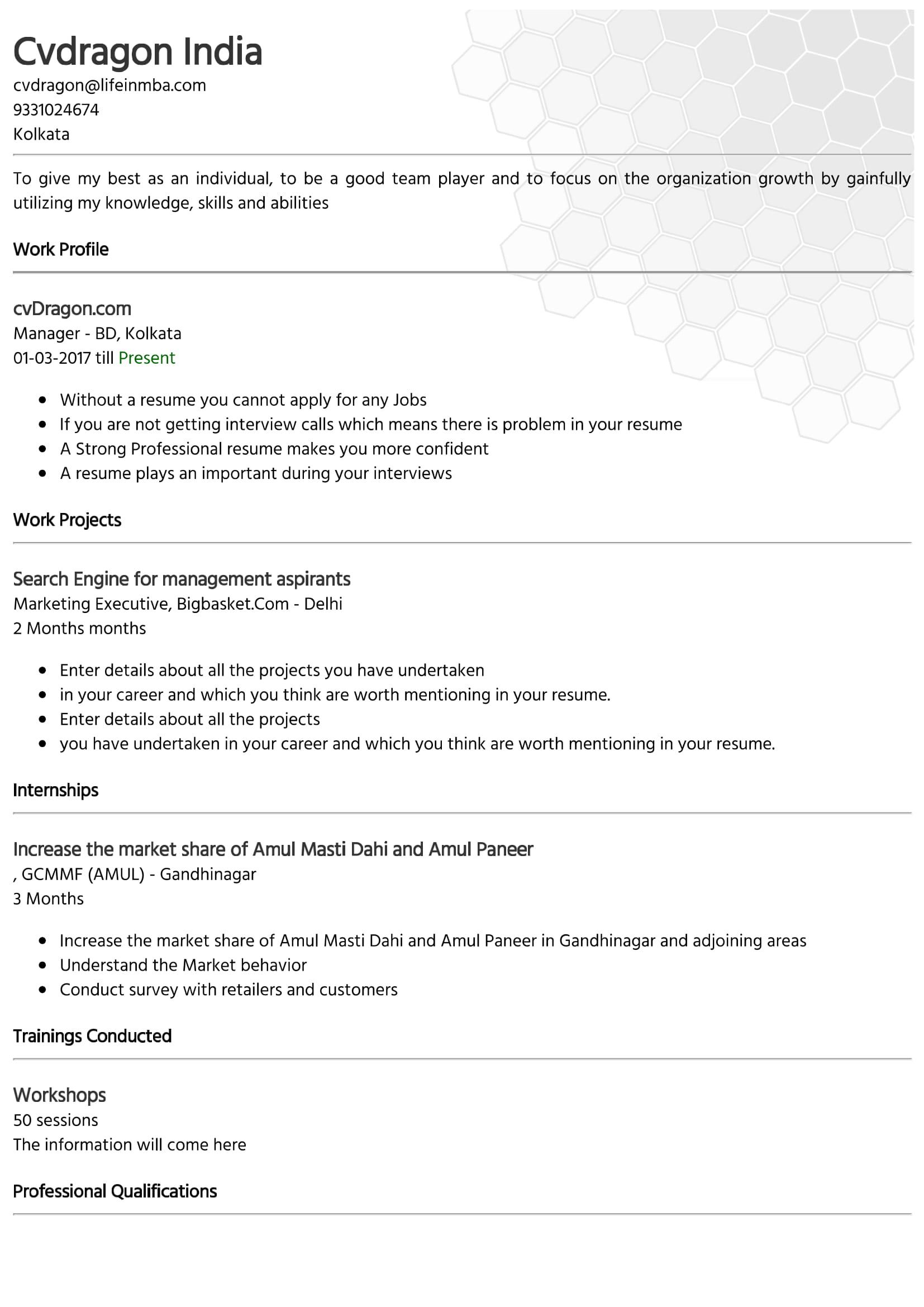 Resume Design - 22